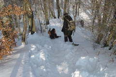 4. Winterwanderung 2010