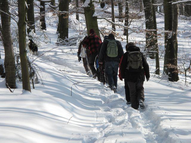 winterwanderung_14_02_2010_4_20100214_1371338085