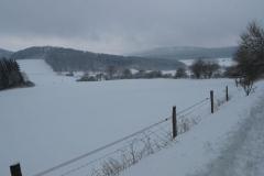 6. Winterwanderung 2010