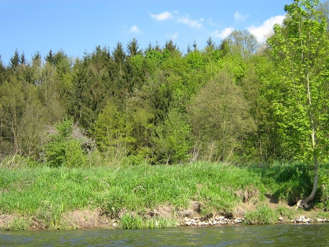 fuldafahrt_und_besuch_unserer_freunde_beim_wvm_melsungen_29_20090221_1232351642