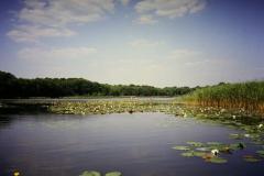 Mecklenburger Seen