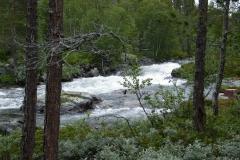 Schweden 2011