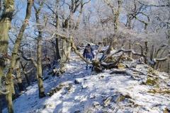 Winterwanderung 2009